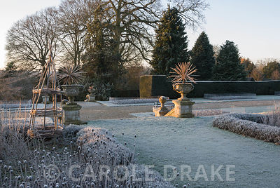 Frosty remains of herbaceous material in the Rainbow Garden with balustrading and urns edging the formal terrace. Kingston Maurward Gardens, Dorchester. Dorset, UK