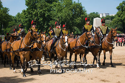 Trooping_the_Colour_8836