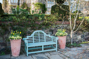 Lower terrace with bench framed by pots of Tulip 'West Point' and limey green euphorbias, plus magnolia and weeping silver pear, Pyrus salicifolia 'Pendula' behind. Little Malvern Court, Worcestershire, UK