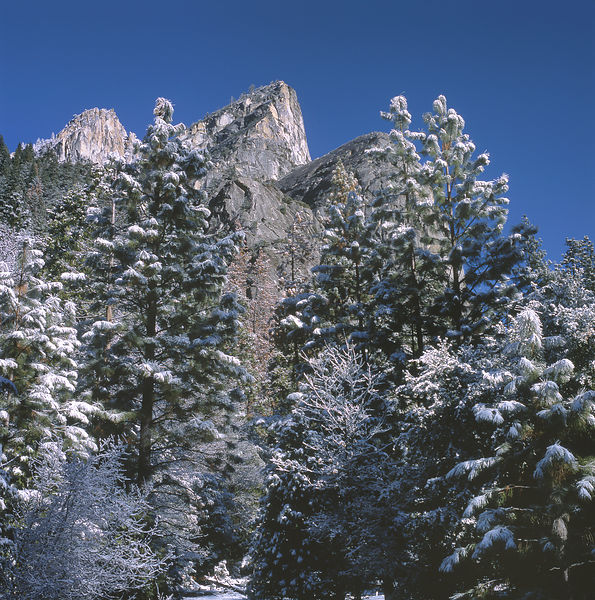 044-California_CA141078_Yosemite_Snow_Storm_014_Preview