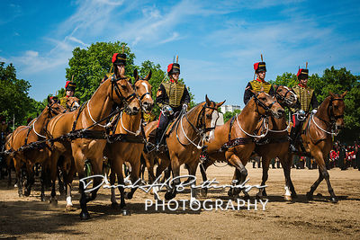 Trooping_the_Colour_8897