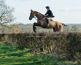 jumping a hedge