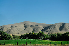 Paysage Californien Sur la route en quittant Solvang Californie USA 10/12