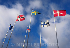 EU and the Nordic Cross flag