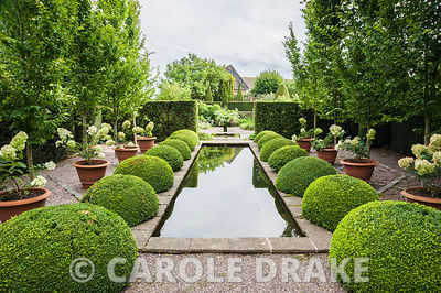 The Rill Garden with clipped box, hydrangeas in pots, and standard Carpinus betulus 'Frans Fontaine'. Wollerton Old Hall, nr Market Drayton, Shropshire, UK