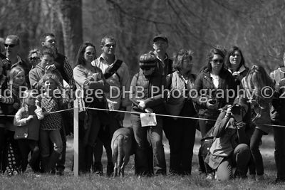 Badminton_2013_Sunday-140