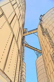Grain Bins looking up