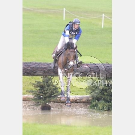 Bramham 2014 photos