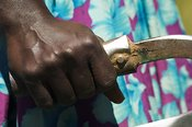 Close up of hands on handles of a hand plough Uganda Africa