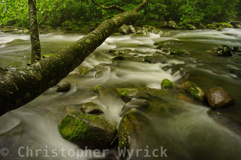 Beautiful section of the Little Pigeon River in the Greenbriar area.  The swirling water and high-resolution details make for a stunning large print.