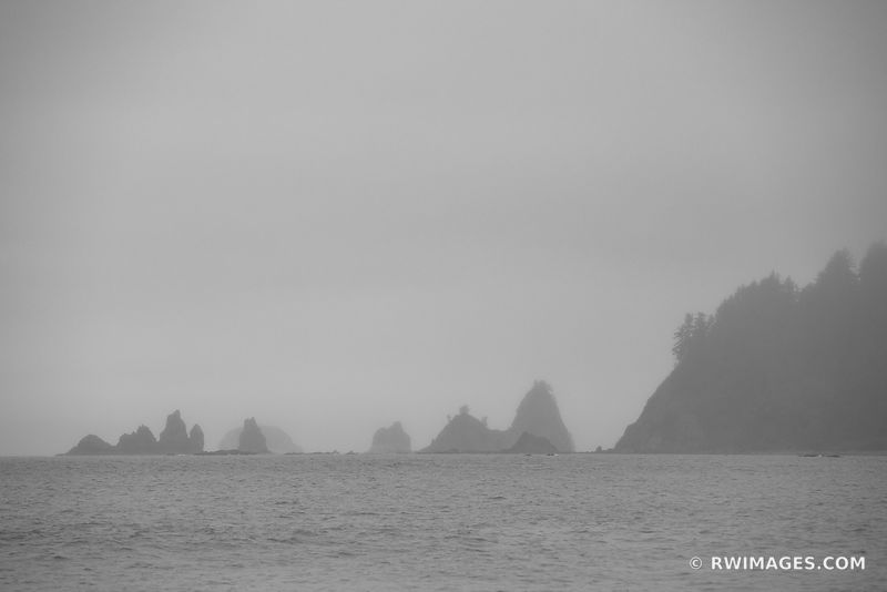 FOGGY EVENING RIALTO BEACH OLYMPIC NATIONAL PARK WASHINGTON BLACK AND WHITE
