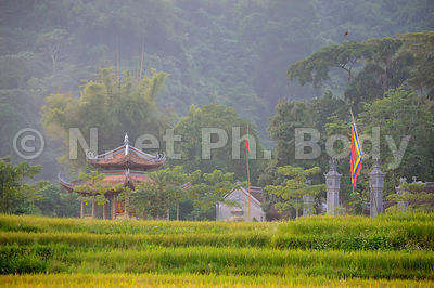 VIETNAM, BAC HA, VILLAGE THAI NOIR//Vietnam, Bac Ha, Black Thai village