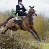 Riding Side Saddle photos