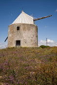 Old windmill at Vejer