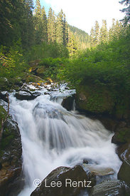One of the small waterfalls in Perry Creek, Mt. Baker-Snoqualmie National Forest, Cascade Mountains, Washington, USA, August, 2008_WA_4642
