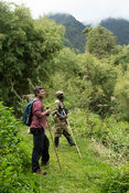 Birdwatcher in the Sabyinyo gorge on Sabyinyo volcano in the Virunga Mountains, Mgahinga Gorilla National Park, Uganda