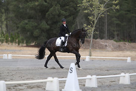 SI_Festival_of_Dressage_310115_Level_1_Champ_0698