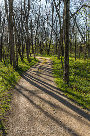 Forest Trail in Hopewell Culture National Historical Park