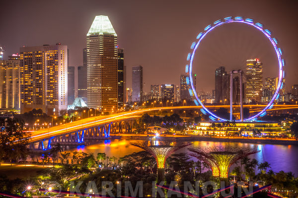 Ferris wheel at night from Gardens by the bay