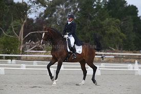 SI_Festival_of_Dressage_300115_Level_9_SICF_0486