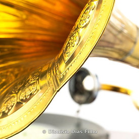 Gramophone in detail
