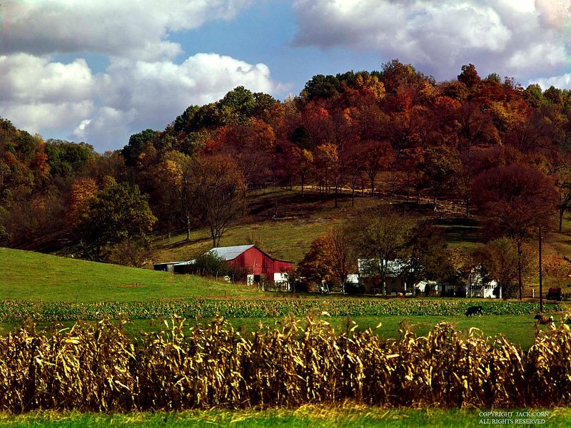 Tradtional farm in Tennessee