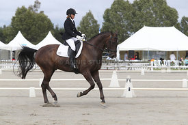 SI_Festival_of_Dressage_310115_Level_4_Champ_0596