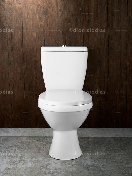 Isolated toilet on wood bottom and concrete floor.