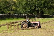 Farmer rowing up hay with an old Fergie tractor and acrobat.