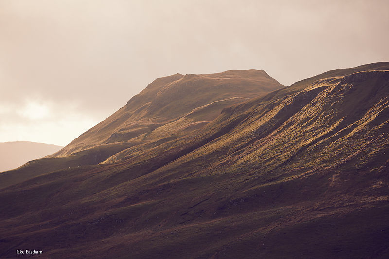 Scotland, highlands, west coast, Ardnamurchan, deer, red deer, stalking, mountains