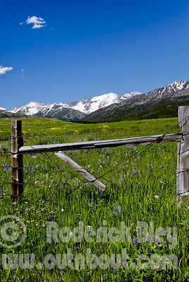 Lower Cottonwood Meadows