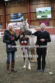 Classes 7, 8, 9 & Pure Bred Junior Male Championship ((1M)