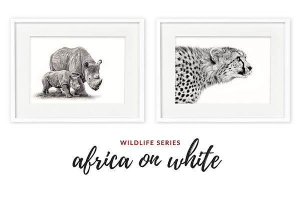 Africa on White Exhibition, Mollymook NSW photos