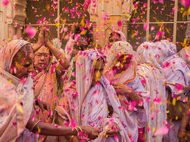 Widows play holi with flower petals in Vrindavan