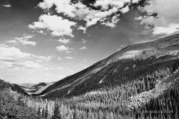 VIEW FROM OLD FALL RIVER ROAD ROCKY MOUNTAIN NATIONAL PARK COLORADO BLACK AND WHITE