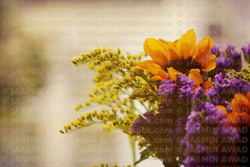 flower_bouquet_with_filters_and_texture