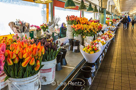 Colorful Tulips and Other Cut Flowers at the Pike Place Market