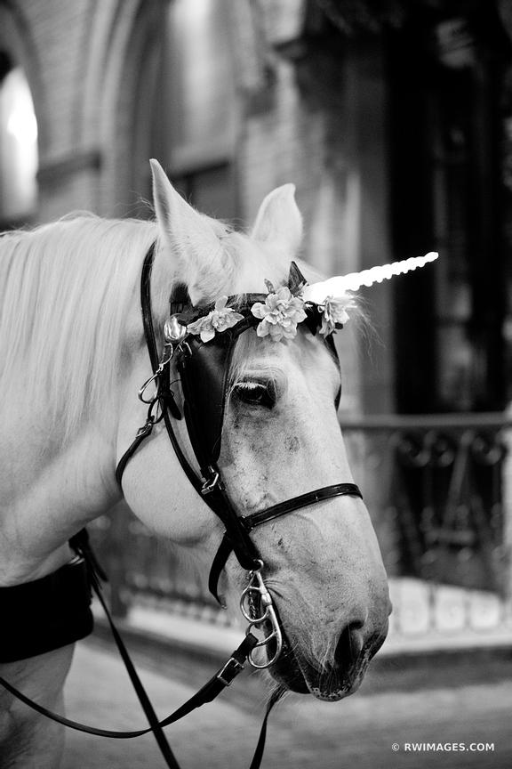 UNICORN SAN ANTONIO TEXAS BLACK AND WHITE