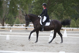 SI_Festival_of_Dressage_300115_Level_7_0284