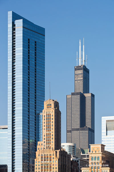 WILLIS TOWER CHICAGO SEARS TOWER CHICAGO DOWNTOWN COLOR VERTICAL