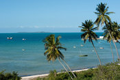 Palm-lined beach, Vilanculos, Mozambique