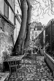 Rue de Vaugirard Paris 15th