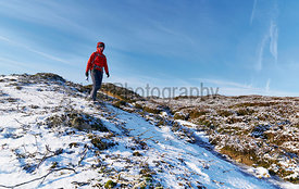 A hiker wearing a red jacket walking through a snow covered winter landscape. Edmondbyer Common, England, UK. Colour styling and film grain applied.