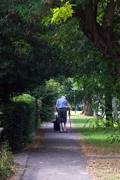 UK - Letchworth Garden City - An elderly man walks through a tree lined street in Letchworth, the world's first Garden City designed by Ebenezer Howard to marry the best of urban and rural living.