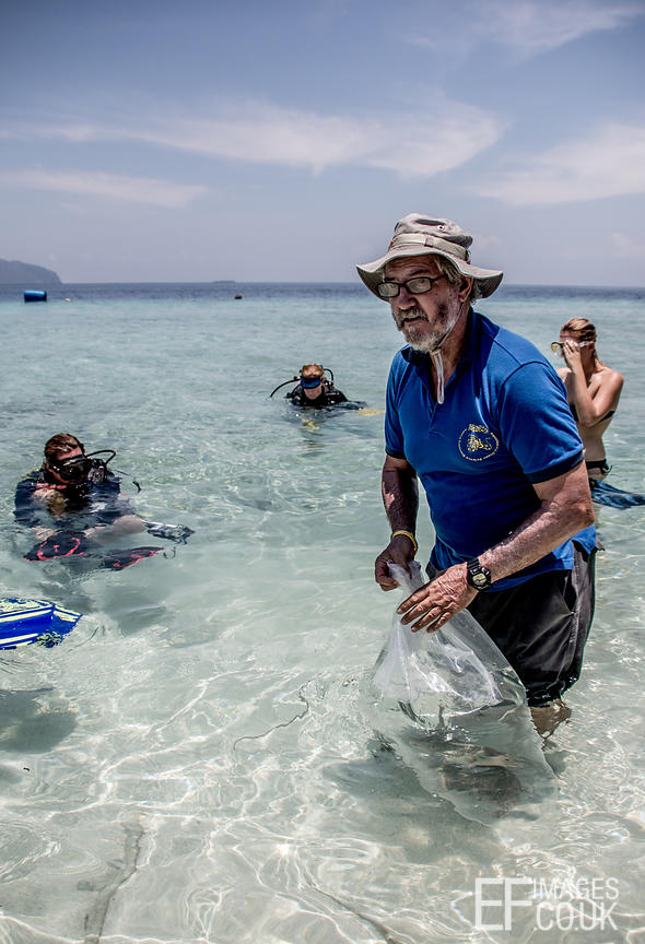 Humphead Wrasse Release