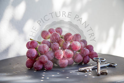 red grapes on metal table , in summer garden against white background.