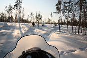 Forest landscape from snowmobile