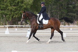 SI_Festival_of_Dressage_300115_Level_9_SICF_0450