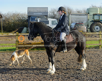 The Belvoir Hunt at Hill Top Farm 4/2 photos