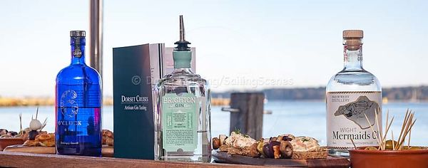 GIN: A PHOTOGRAPHIC SUBJECT WITH A DIFFERENCE photos